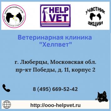 HelpvetLubertsyMO