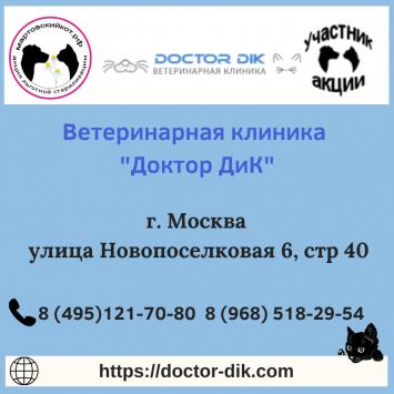 DoctorDIKMoskva