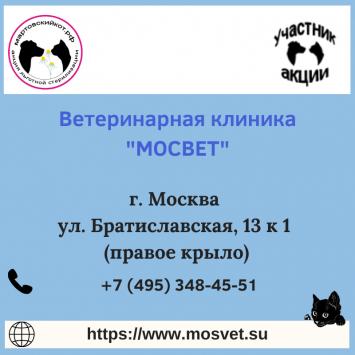 MosvetMoskva