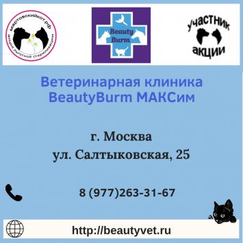 beautyburmMoskva